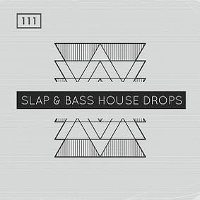 Bingoshakerz – Slap & Bass House Drops