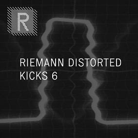 Riemann – Distorted Kicks 6