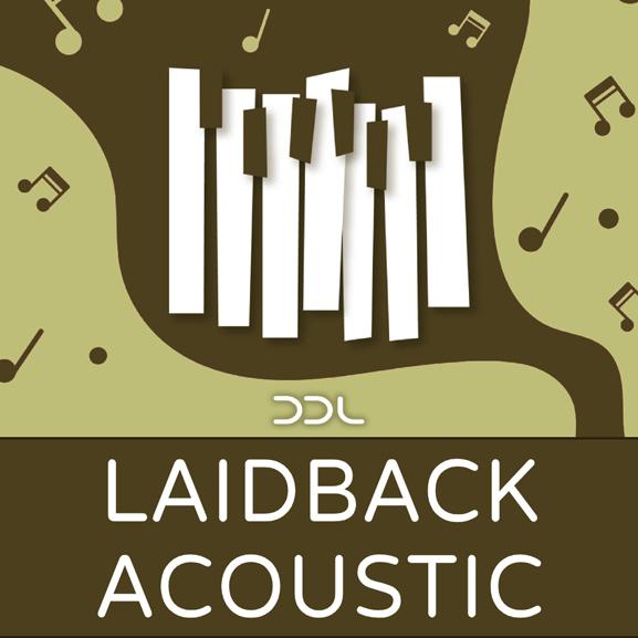 Deep Data Loops - Laidback Acoustic 1