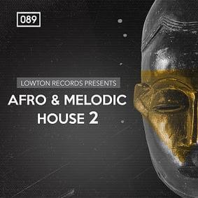 Bingoshakerz – Afro & Melodic House 2 by Lowton Records