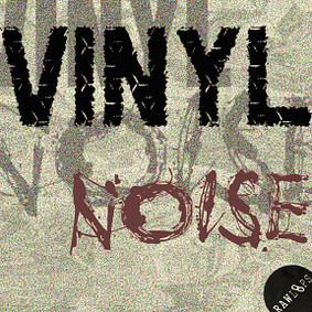 Raw Loops – Vinyl Noise
