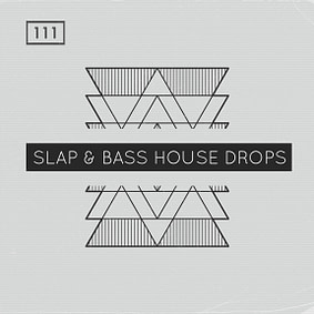 Bingoshakerz – Slap & Bass House Drops