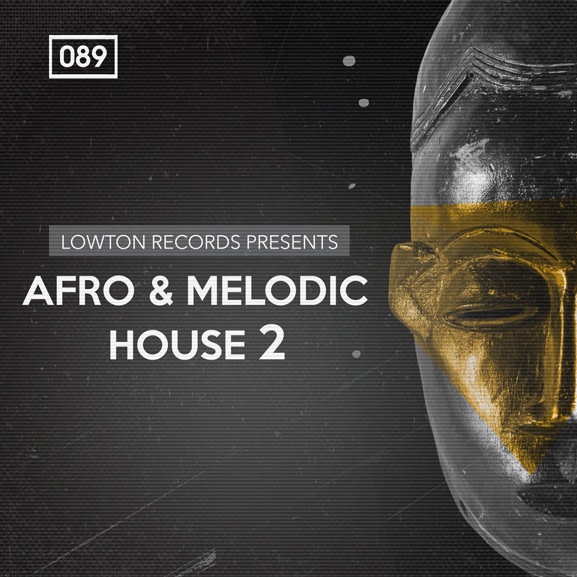 Bingoshakerz - Afro & Melodic House 2 by Lowton Records 1