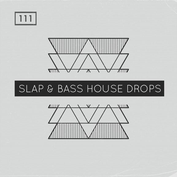 Bingoshakerz - Slap & Bass House Drops 1