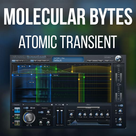 Molecular Bytes – Atomic Transient